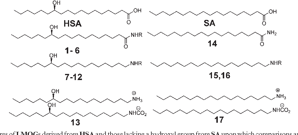 Robust organogels from nitrogen-containing derivatives of (R