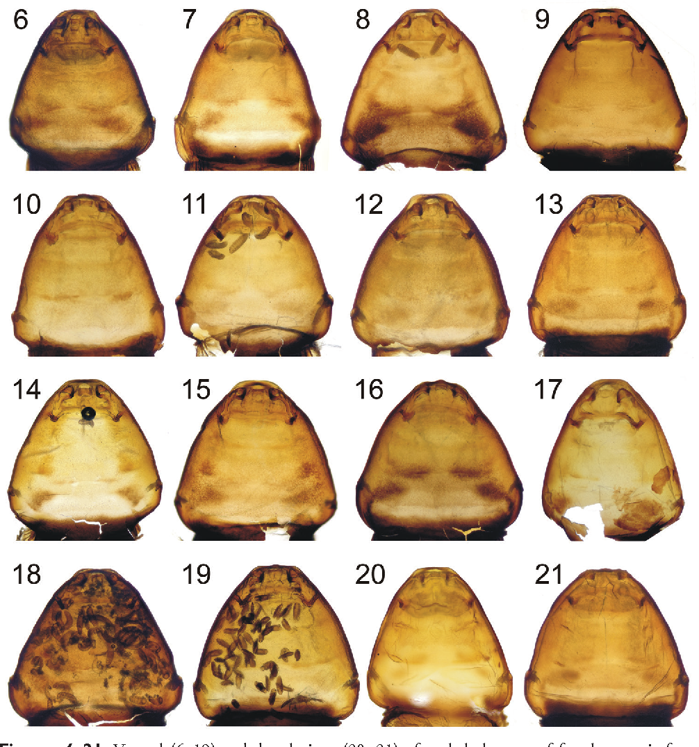 figure 6–21