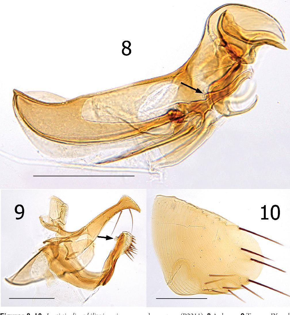 figure 8–10