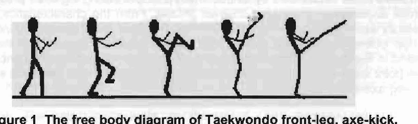 PDF] THE BIOMECHANICAL ANALYSIS OF THE TAEKWONDO FRONT-LEG
