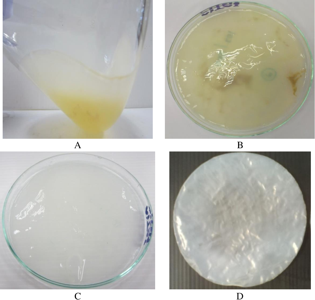 Pdf Production Of Bacterial Cellulose From Acetobacter Xylinum By Using Rambutan Juice As A Carbon Source Semantic Scholar