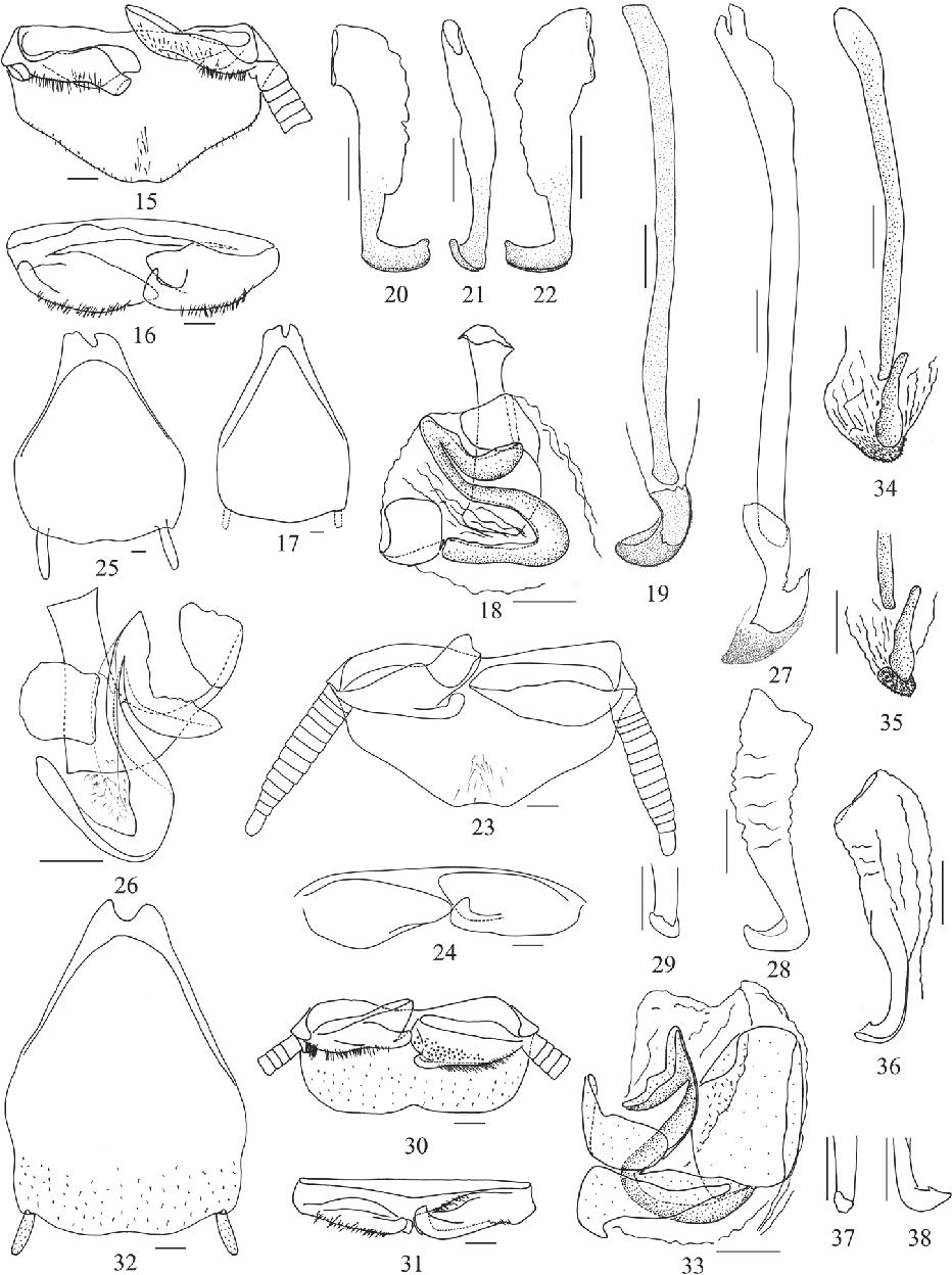 figure 15–38
