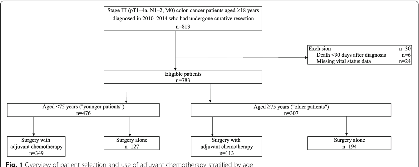 Effect Of Adjuvant Chemotherapy On Survival Benefit In Stage Iii Colon Cancer Patients Stratified By Age A Japanese Real World Cohort Study Semantic Scholar