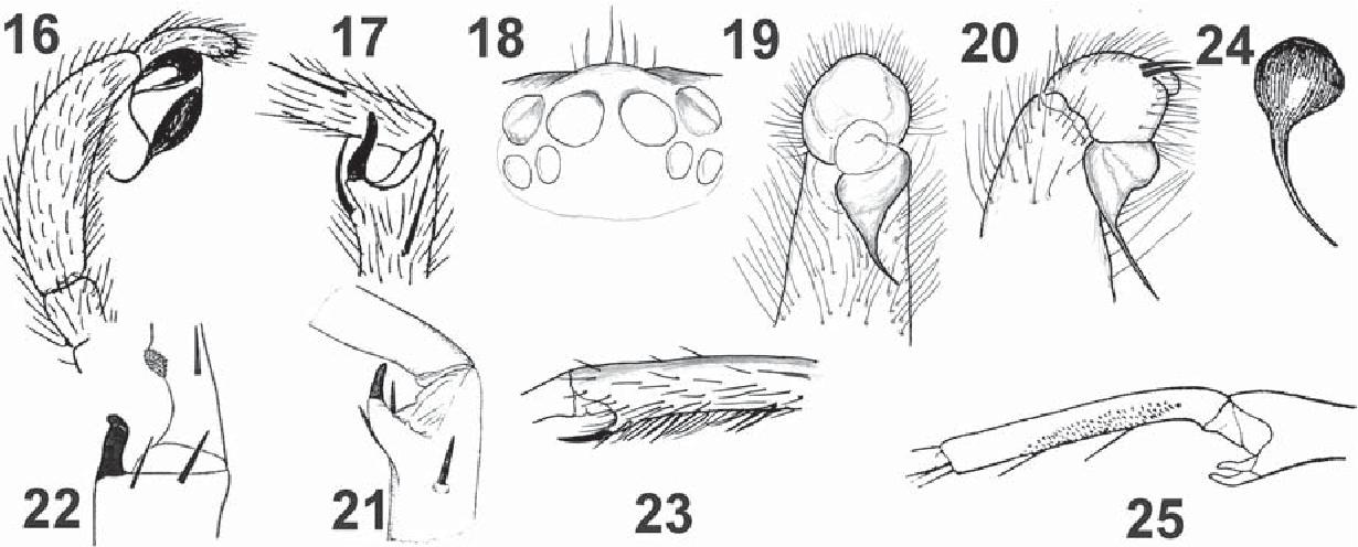figure 16–25