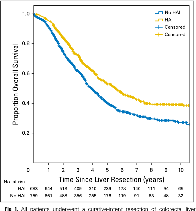 Pdf Perioperative Hepatic Arterial Infusion Pump Chemotherapy Is Associated With Longer Survival After Resection Of Colorectal Liver Metastases A Propensity Score Analysis Semantic Scholar