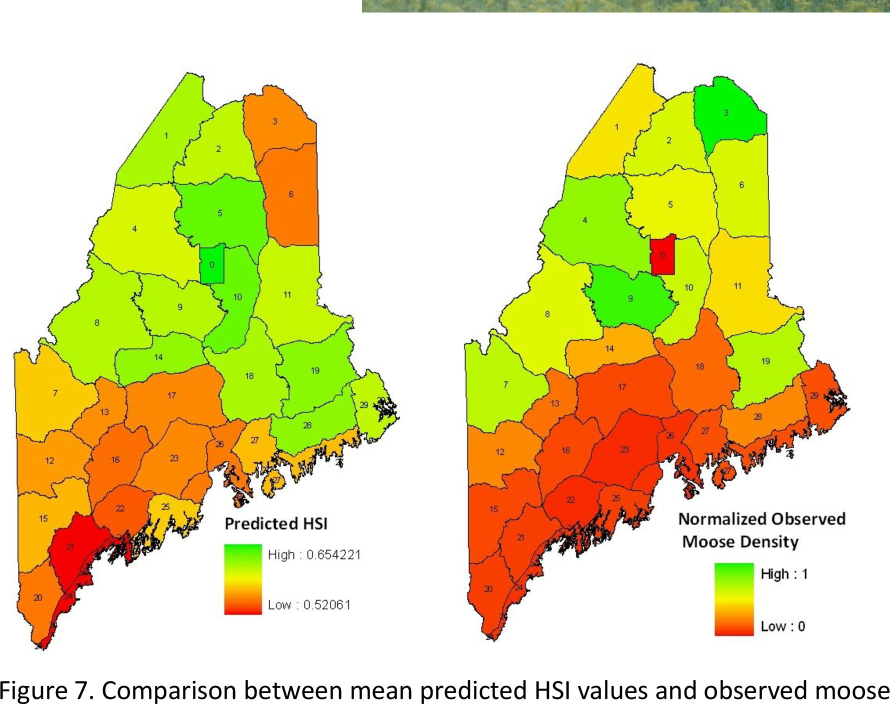 maine deer population map Figure 7 From Modeling Habitat Suitability For Moose Alces Alaces maine deer population map