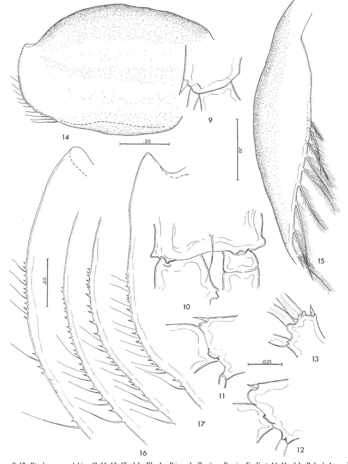 figure 9–17