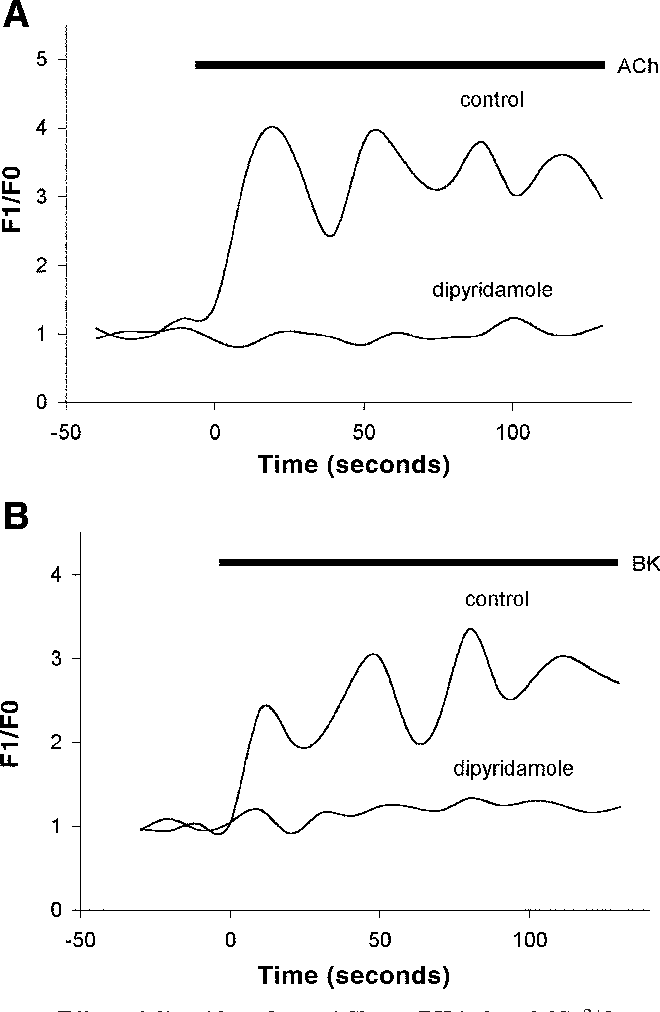plaquenil retinopathy visual field