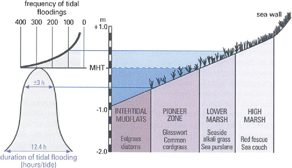 figure 9.16