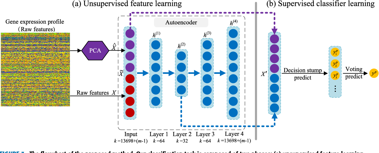 Integrating Feature Selection and Feature Extraction Methods