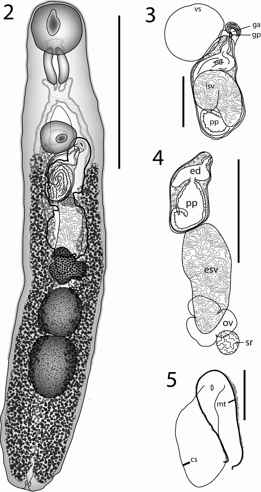 figure 2–5