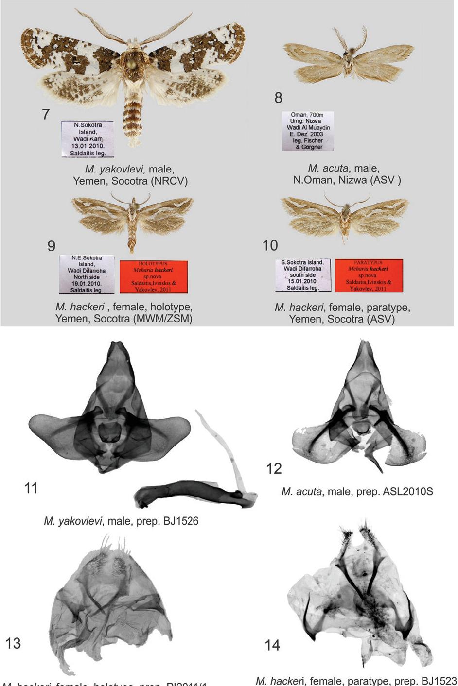 figure 7–14