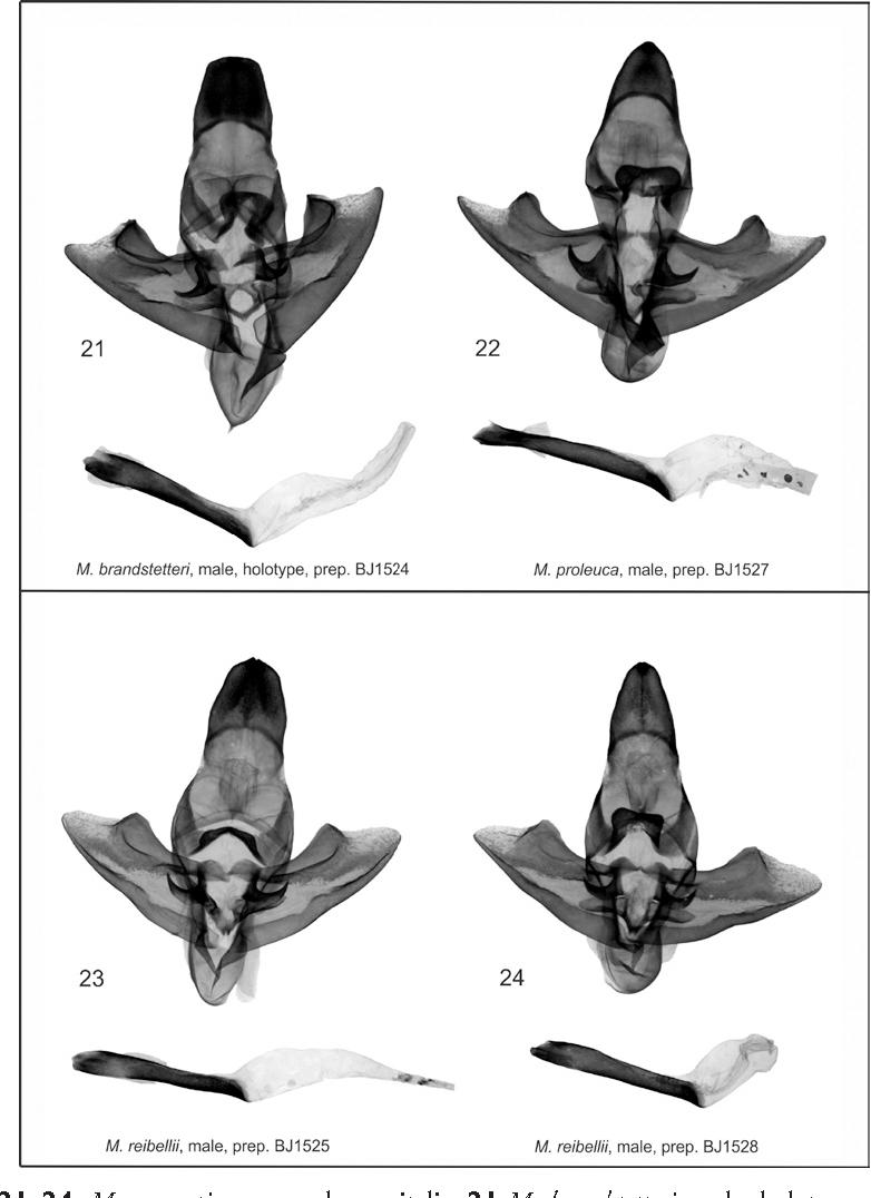 figure 21–24