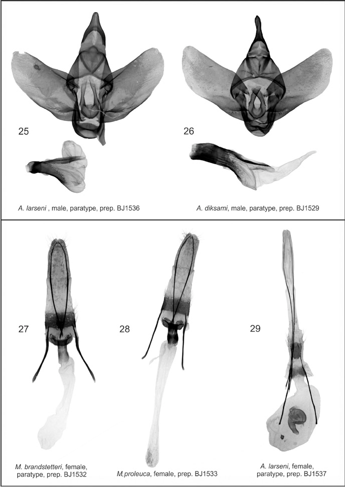 figure 25–29