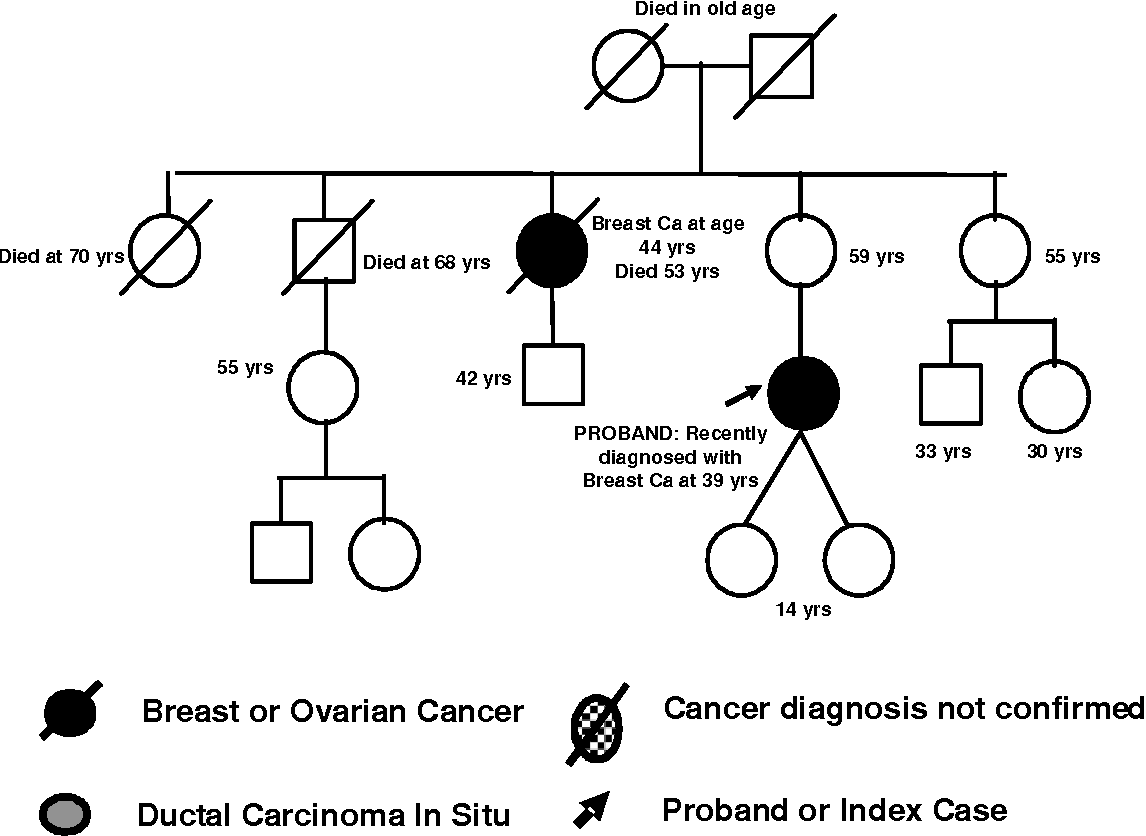 Pdf 300 Proband Or Index Case Breast Or Ovarian Cancer Cancer Diagnosis Not Confirmed Ductal Carcinoma In Situ Died In Old Age Breast Ca At Age Semantic Scholar