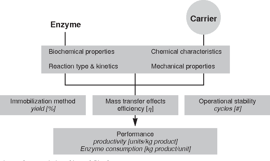 Immobilized Enzymes: Methods and Applications - Semantic Scholar
