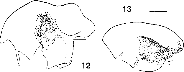 figure 12-13