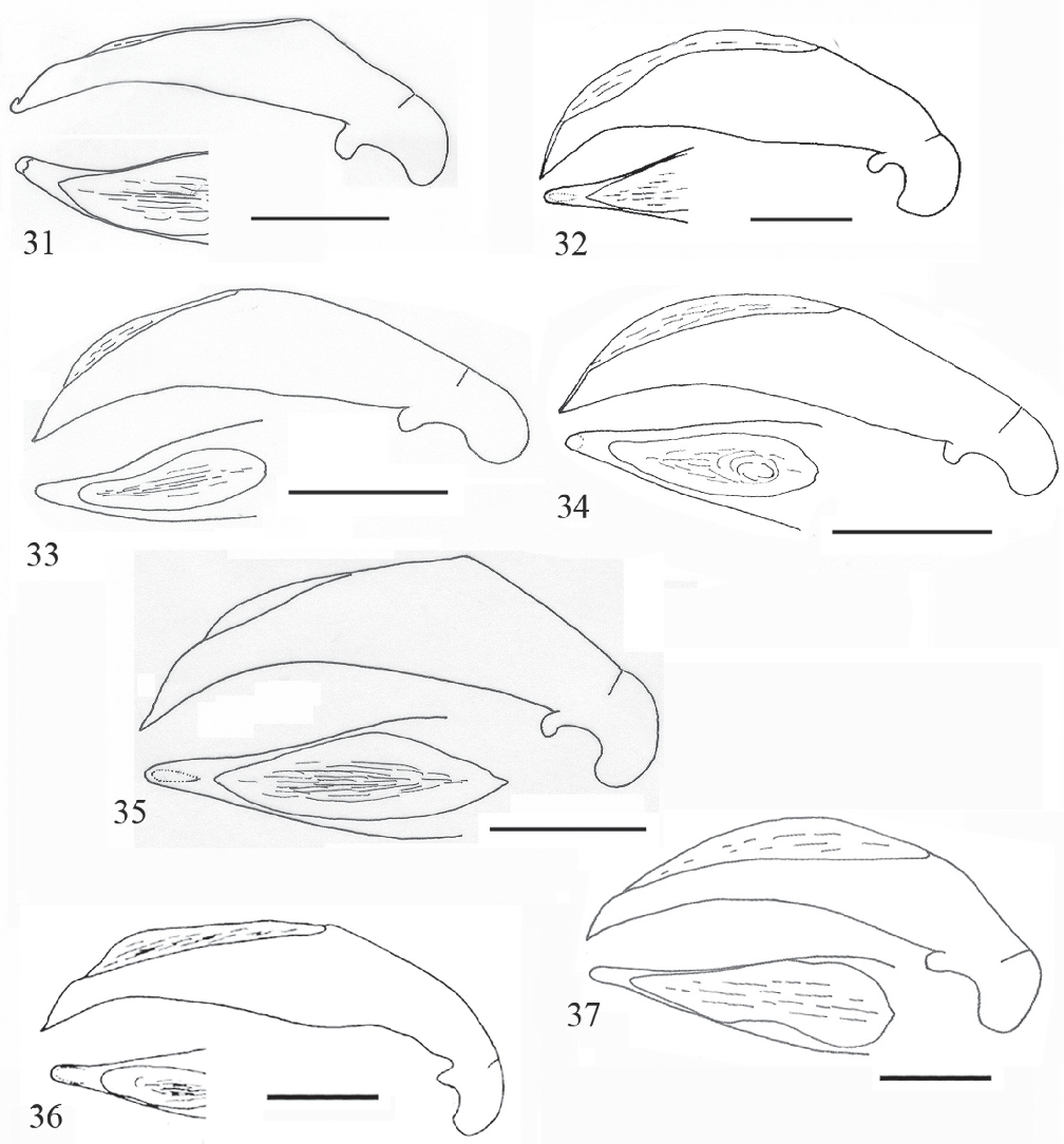 figure 31–37