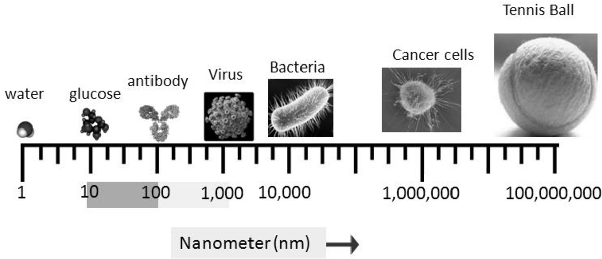 Figure 1 from Nanotechnology-Based Detection and Targeted