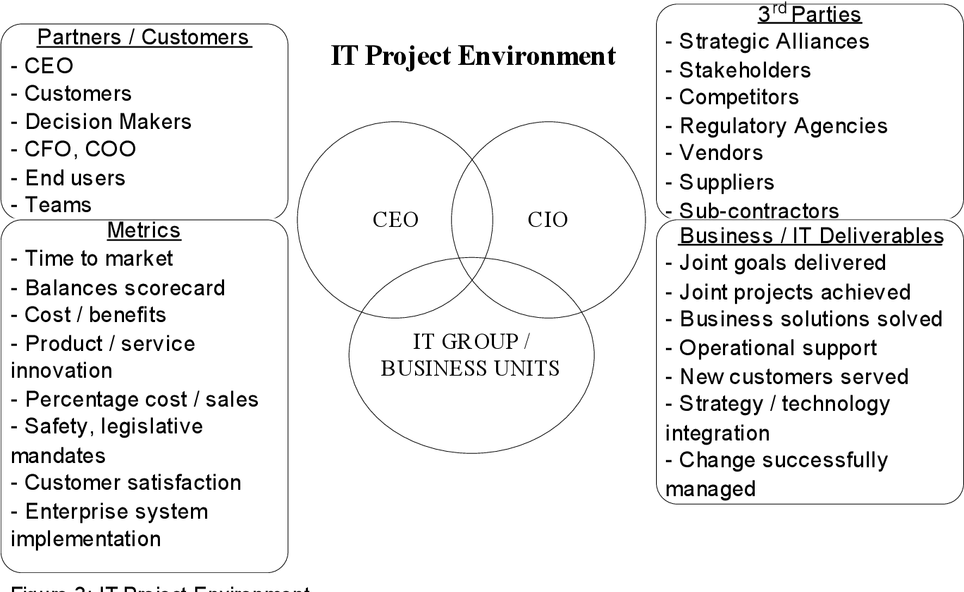 PDF] CIOs and IT professionals as change agents, risk and ...