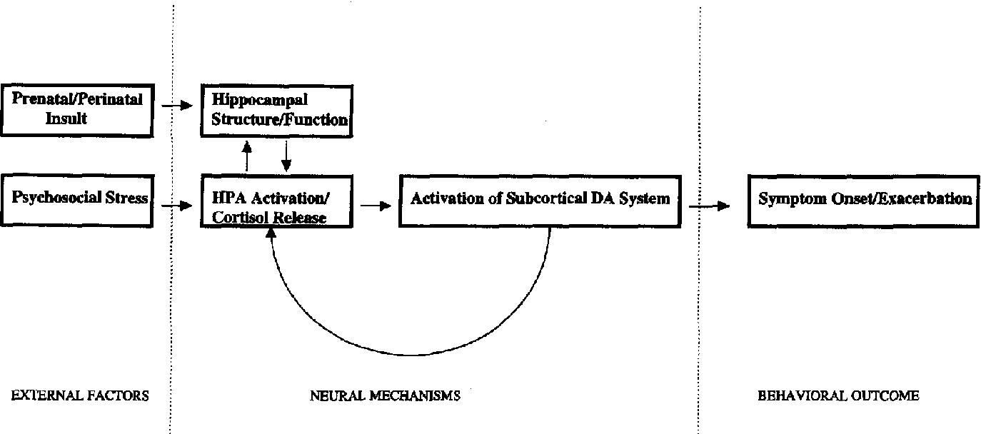 Diathesis Stress Model Of Schizophrenia - slidesharedocs
