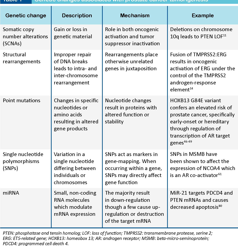 PDF] Prostate Cancer Genetics: A Review - Semantic Scholar