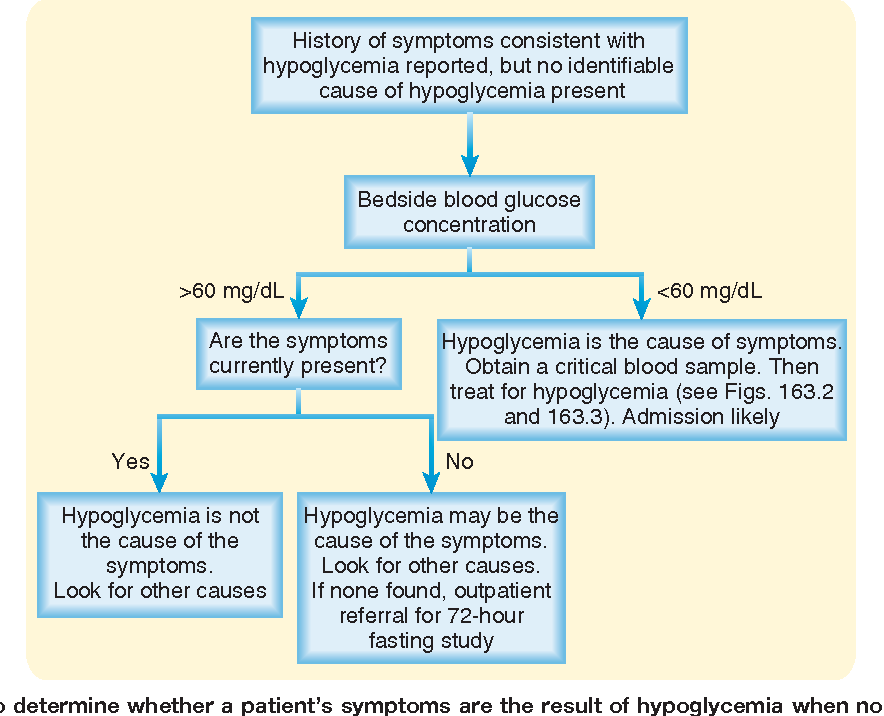 Figure 163 1 from 163 - Hypoglycemia - Semantic Scholar