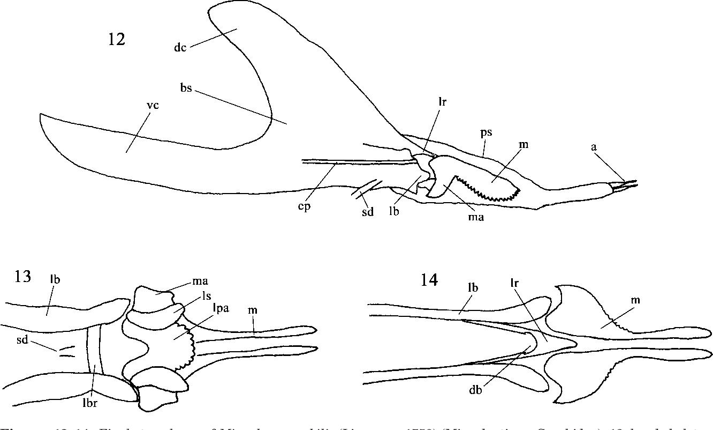 figure 12–14