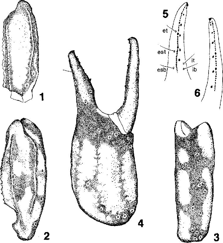 figure 1—6