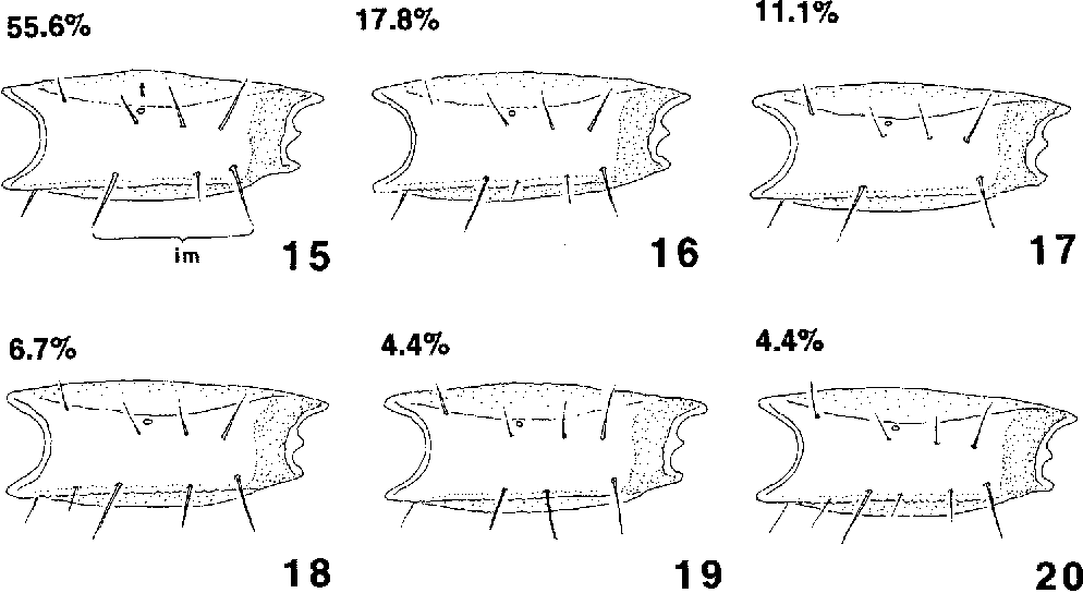 figure 15—20