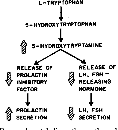 Figure 7 from Stimulation of human prolactin secretion by