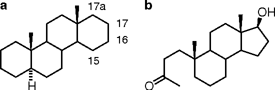 figure 1.29