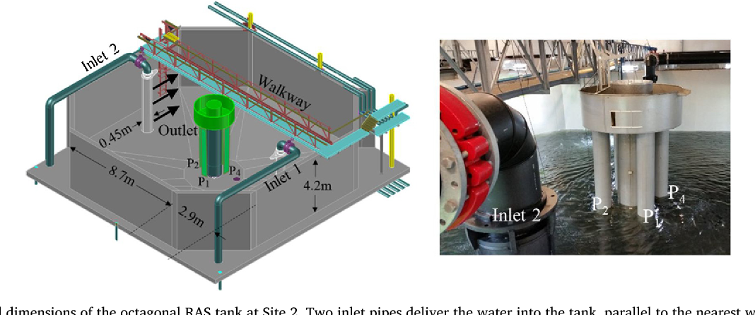 PDF] Water velocity in commercial RAS culture tanks for