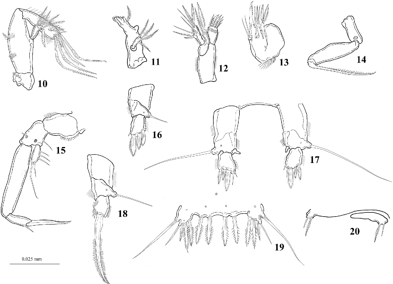 figure 10-20