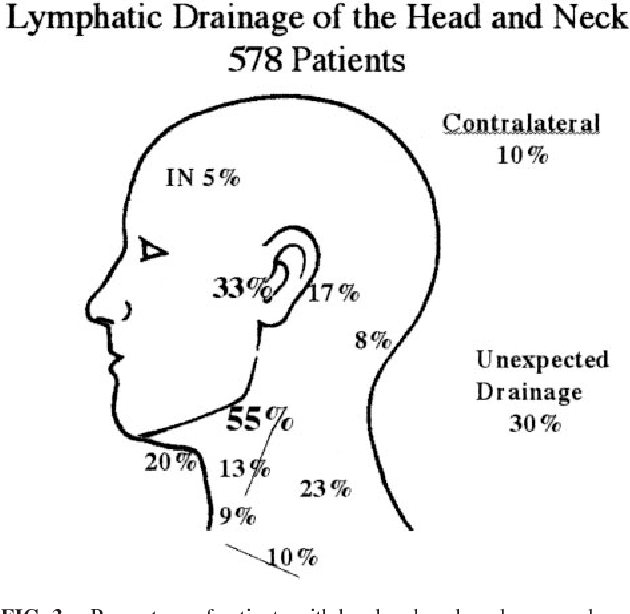 Lymphatic drainage of the skin - Semantic Scholar