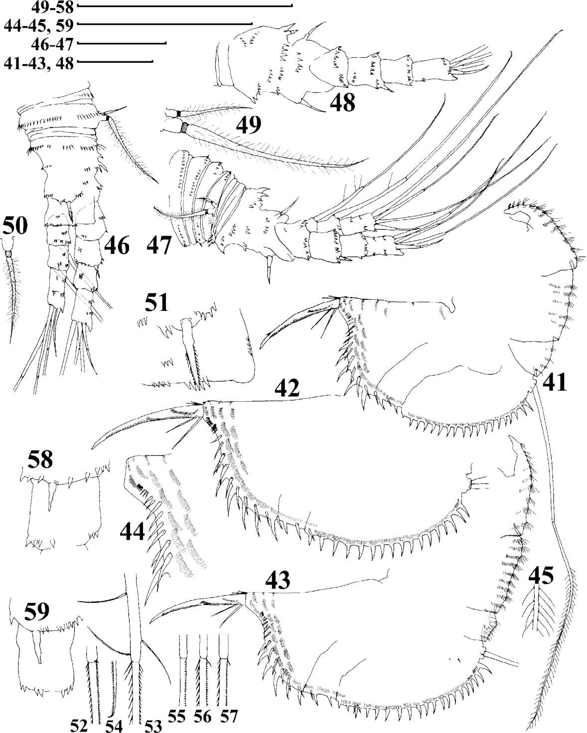 figure 41–59