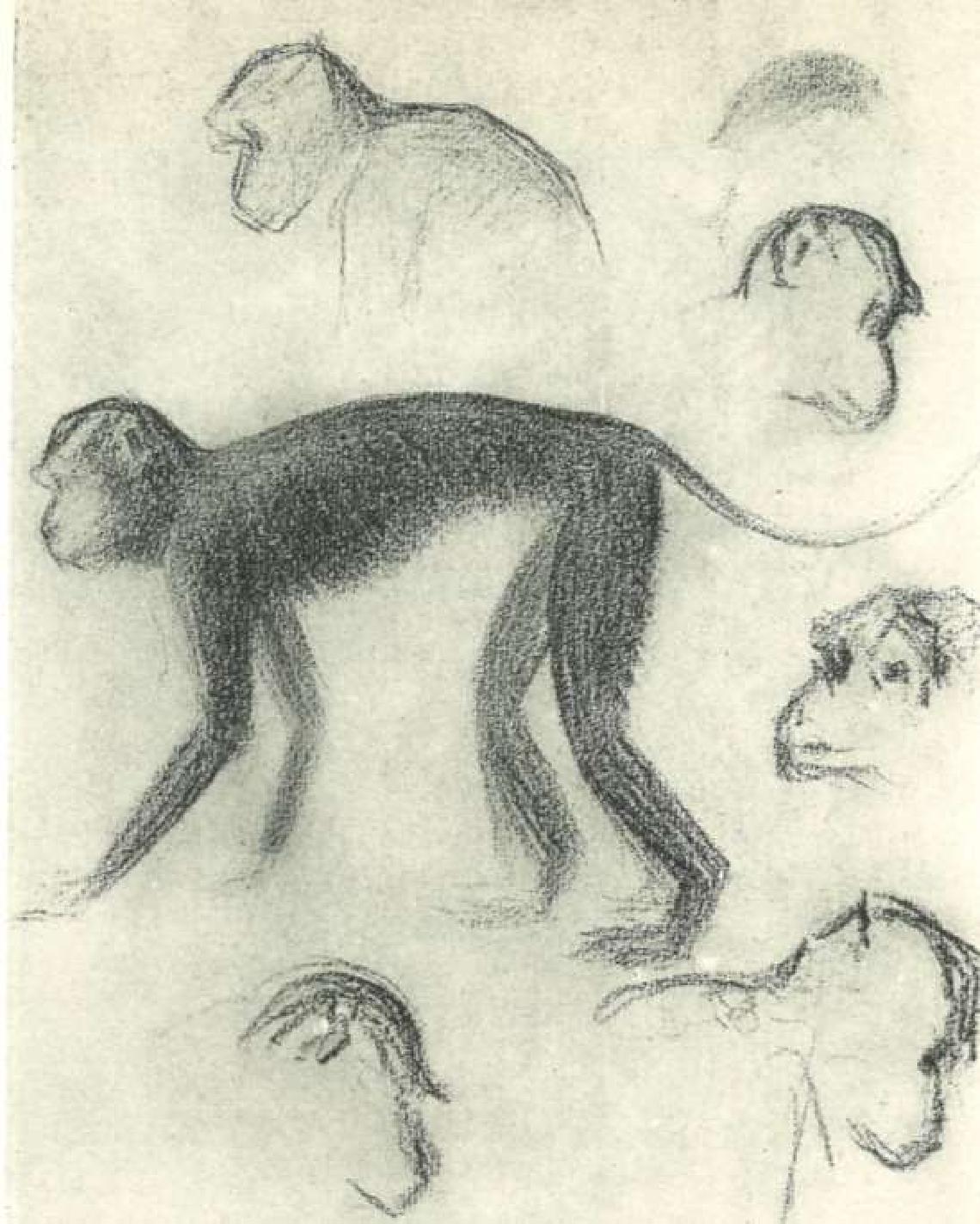figure 2.40