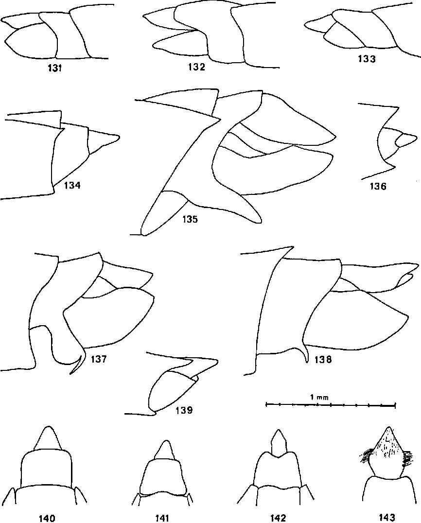figure 131—143