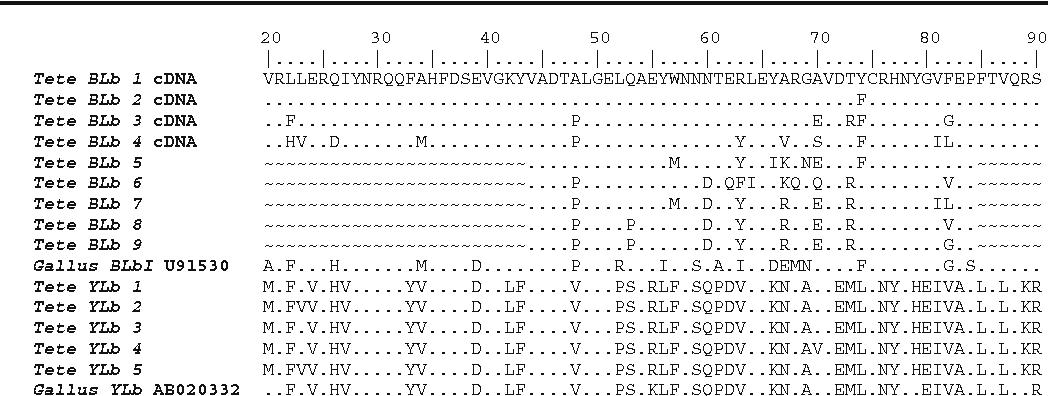 20 Amino Acid One Letter Code.Figure 1 From The Mhc Class Ii Of The Black Grouse Tetrao