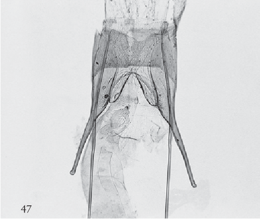 figure 47-51