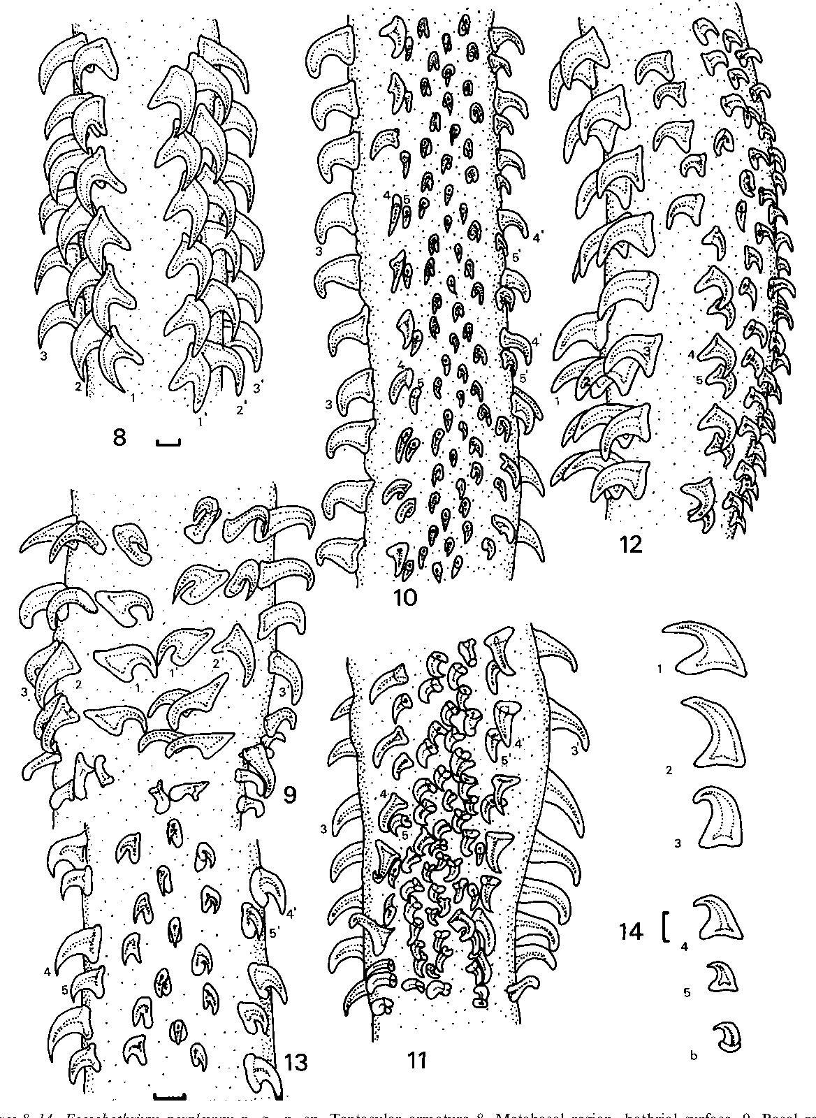 figure 8–14