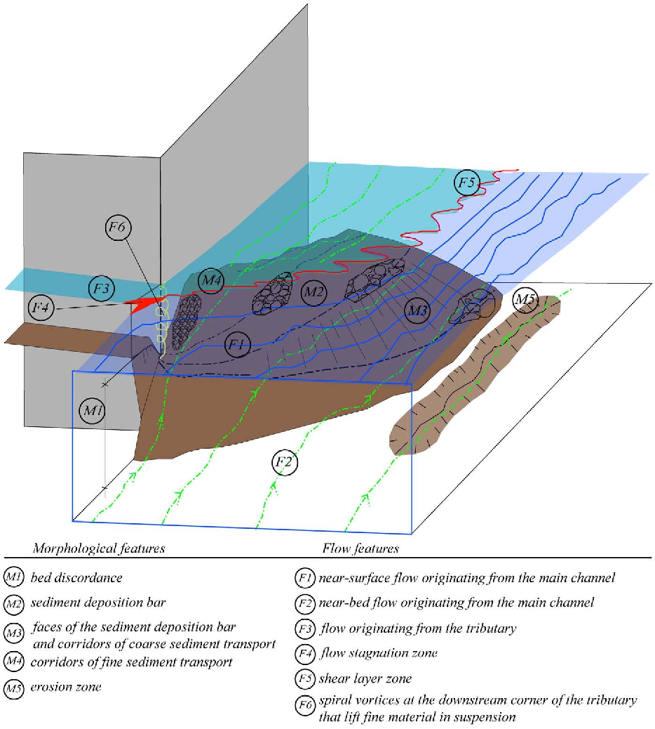 PDF] Hydromorphological implications of local tributary widening ...