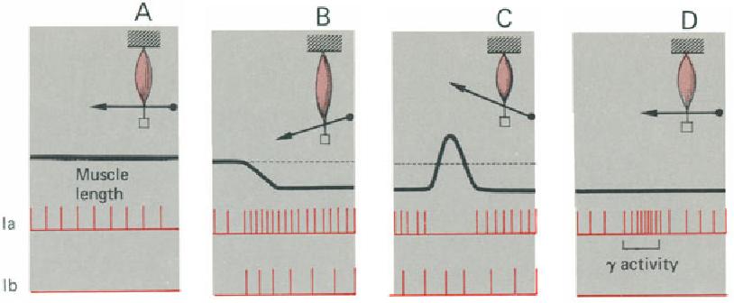 figure 6-2
