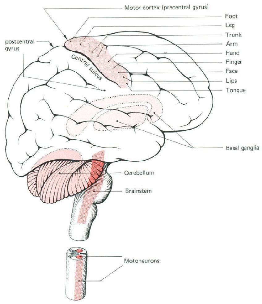 figure 6-9