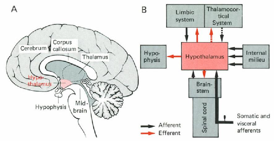 figure 8-16