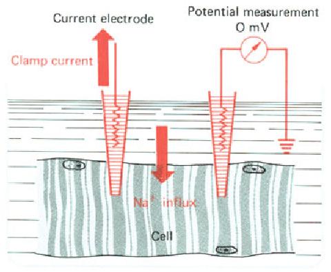 figure 2-13