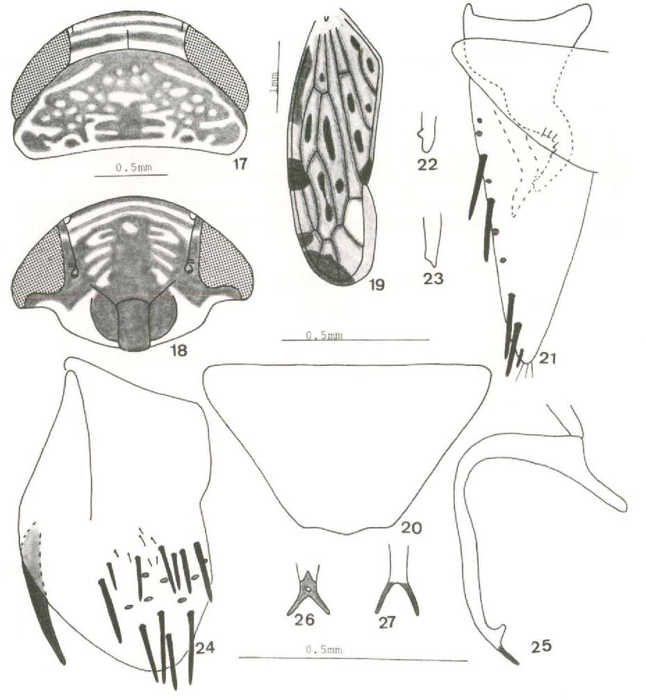 figure 17-27