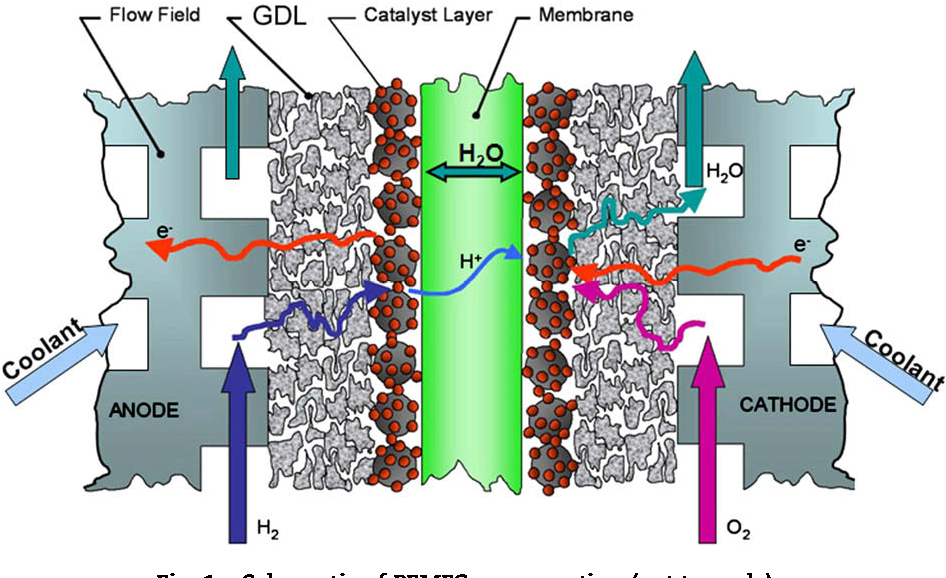 Figure 1 from Water management studies in PEM fuel cells