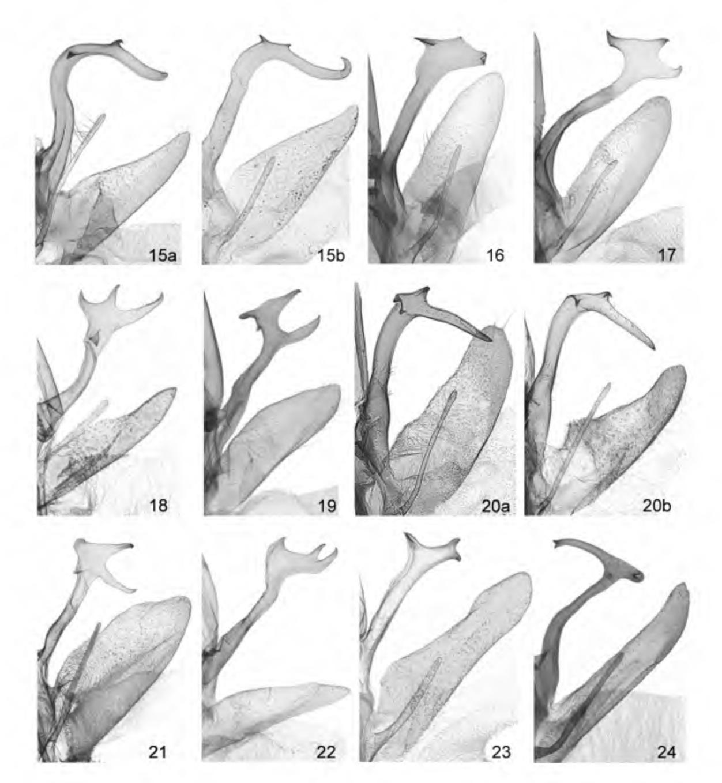 figure 15-24