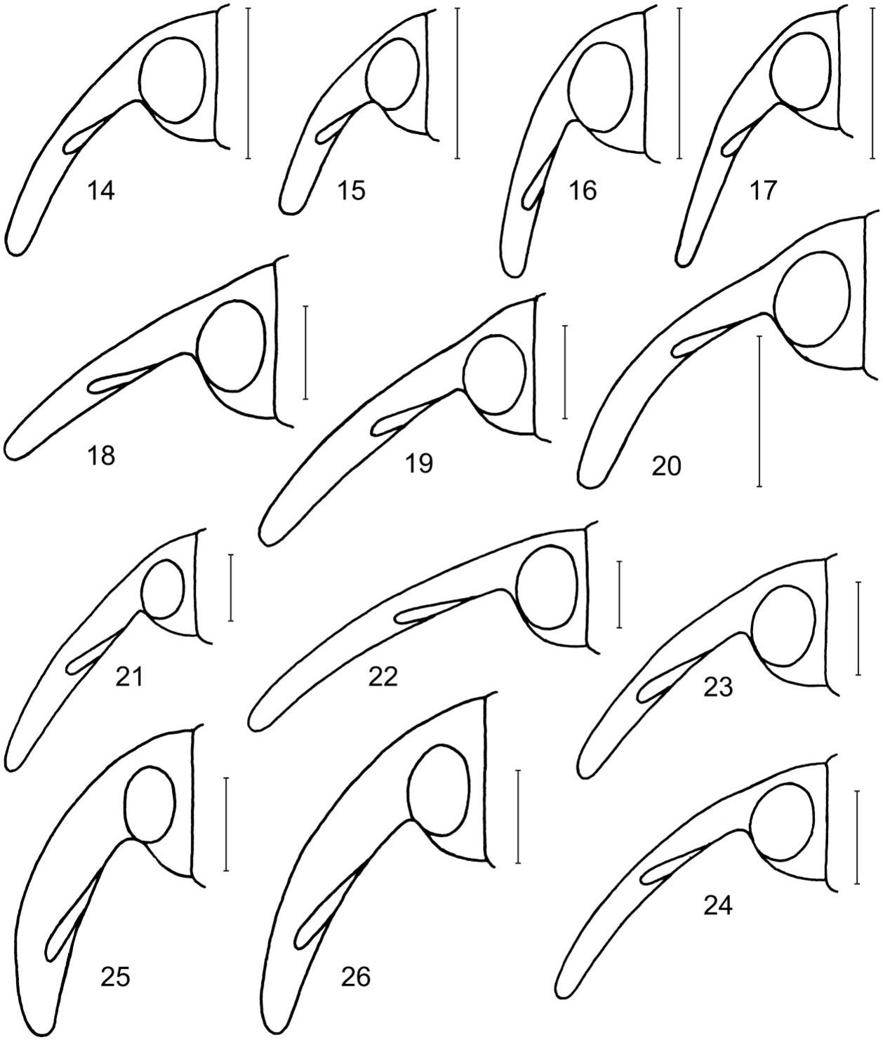 figure 14–26